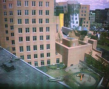 MIT - Stata Center